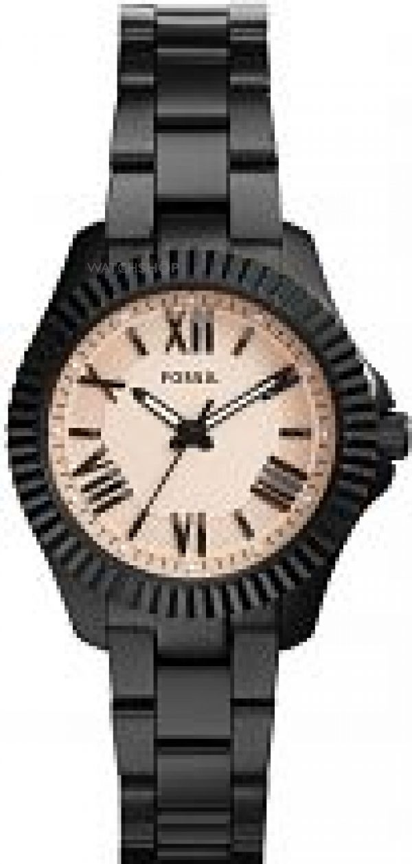 Ladies Fossil Cecile Watch AM4614