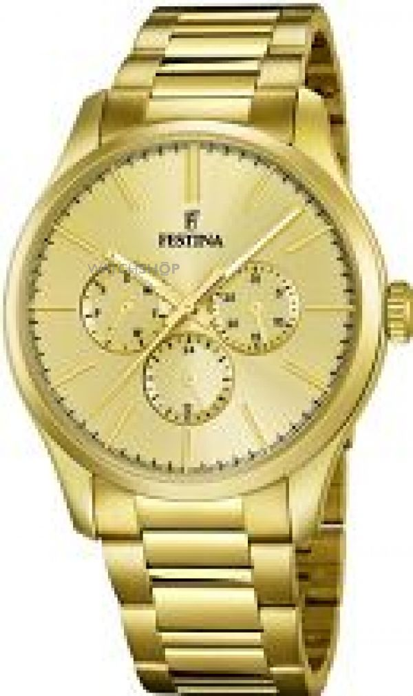 Mens Festina Watch F16811/1