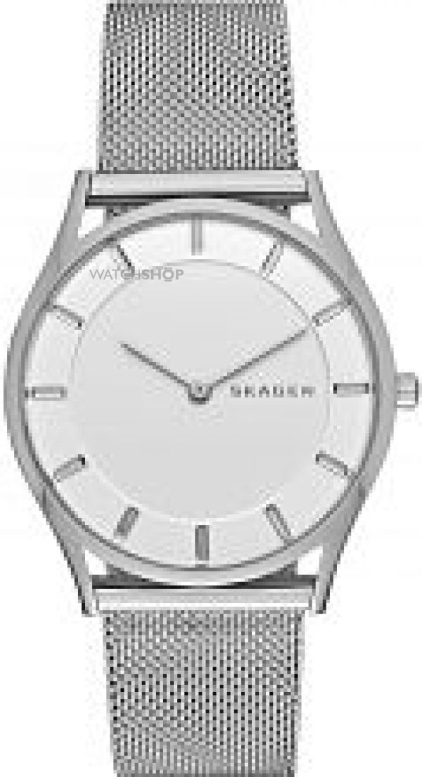 Ladies Skagen Holst Watch SKW2342