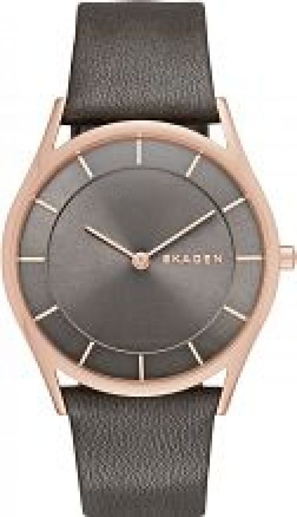Ladies Skagen Watch SKW2346